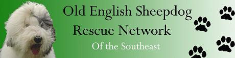 Old English Sheepdog Rescue Network